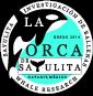 LA ORCA DE SAYULITA – Sayulita's first pure whale watch and whale research company.